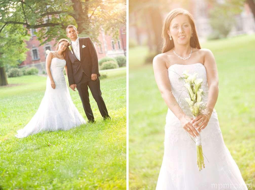 basia i rafał sesja poślubna